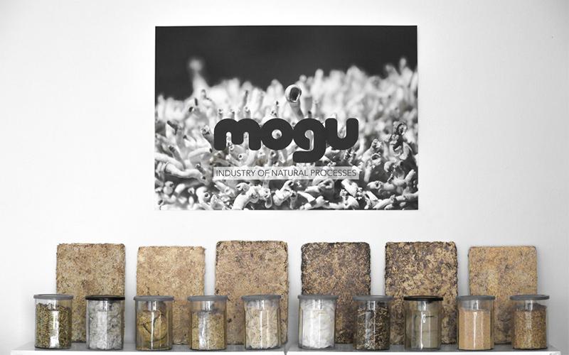 Mogu, biomateriali ottenuti da fibre di scarto