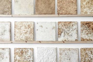 Mogu, biomateriale da funghi e scarti agricoli